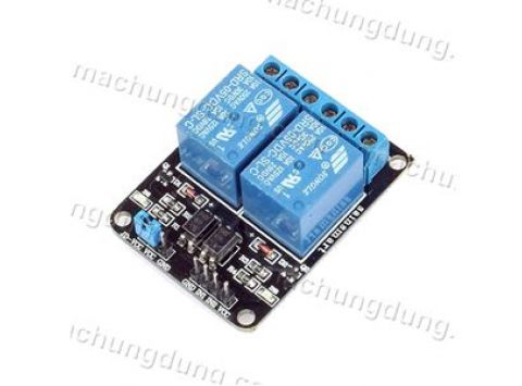Module 2 Relay 10A 5VDC Low (H04)
